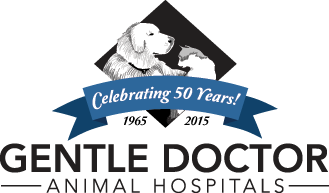 Gentle Doctor logo